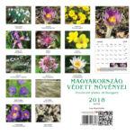 Százszorkép - Magyarország védett növényei